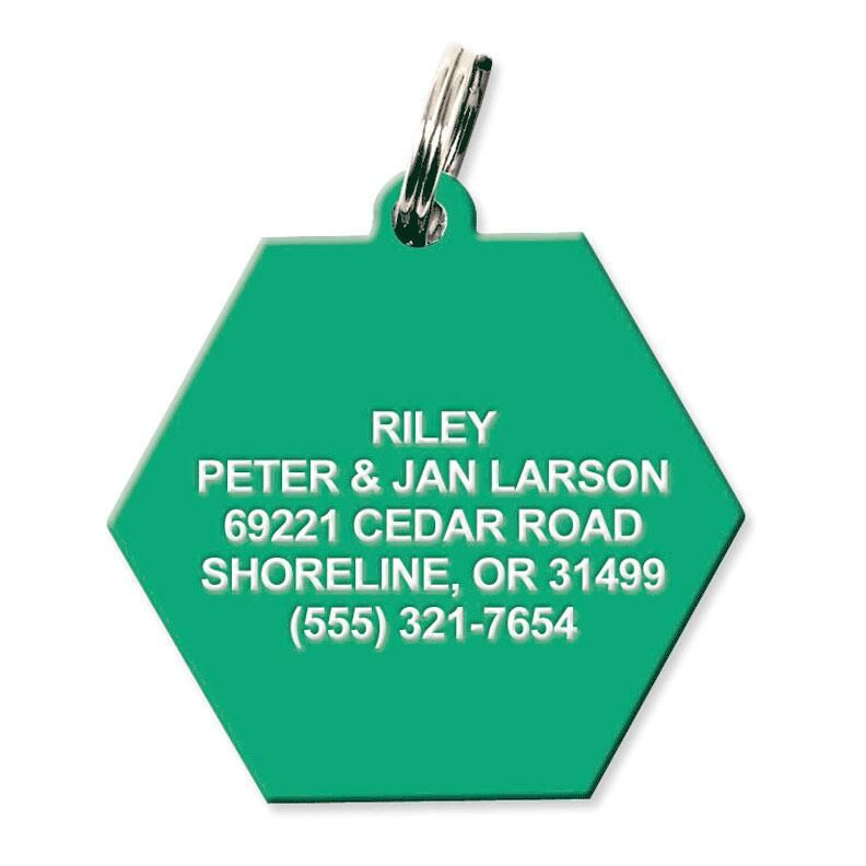 Plastic Hexagon Pet Tag