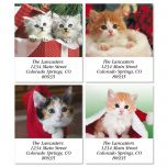 Christmas Cats Address Labels  (4 designs)