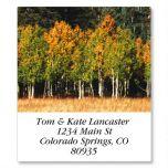 Autumn Colors Select Address Labels  (24 designs)
