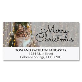 Christmas Cat Deluxe Address Labels