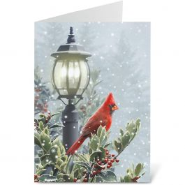 Winter Solitude Christmas Cards - Personalized