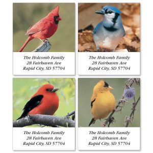Beautiful Birds Select Address Labels  (4 designs)