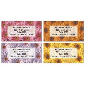 Daisy Delight Border Address Labels  (4 Designs)