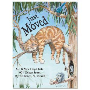 Moving Cat Fun Postcard