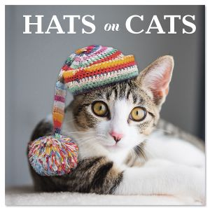 Hats on Cats Book