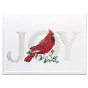 Cardinal Joy Nonpersonalized Deluxe Christmas Cards - Set of 56