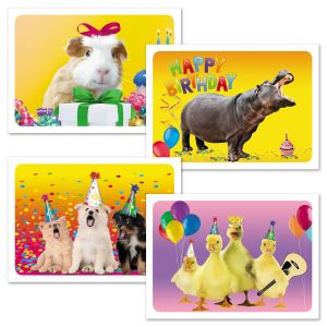 Photo Animal Kid Cards