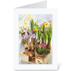 Spring Bulbs Easter Note Cards