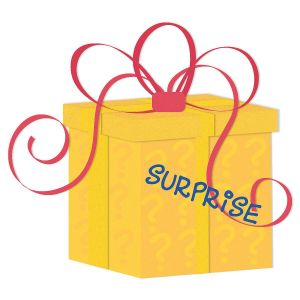Christmas Surprise Package
