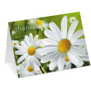 Daisy Thank You Note Cards