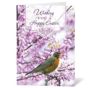 Robin Easter Cards