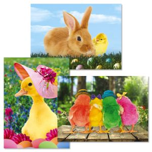 Picture This™ Easter Cards