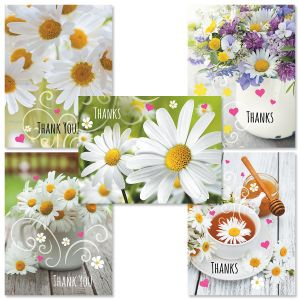Daisy Thank You Card Value Pack
