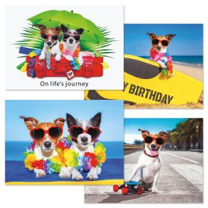 Dog's Day Birthday Cards