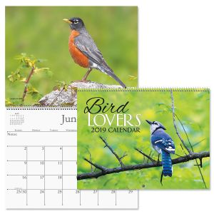 2019 Bird Lovers Wall Calendar