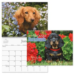 2019 Dachshunds Wall Calendar