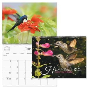 2019 Hummingbirds Wall Calendar