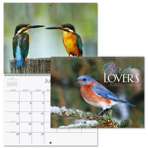 2020 Bird Lovers Wall Calendar