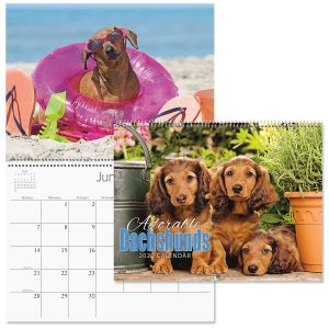 2020 Dachshunds Wall Calendar