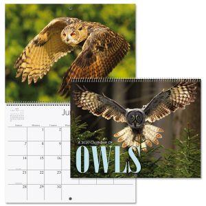 2020 Owls Wall Calendar