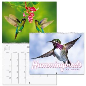 2020 Hummingbirds Wall Calendar