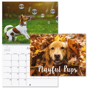 2020 Playful Pups Wall Calendar
