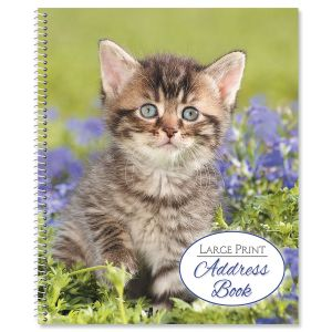 Playful Kitten Large Print Address Book