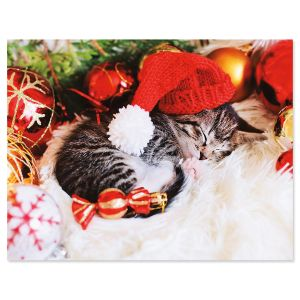 Christmas Kitten Note Cards