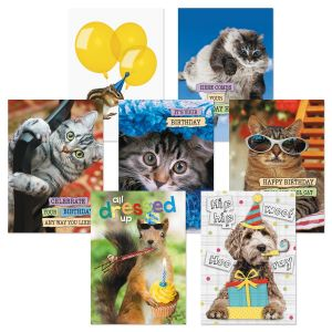 Party Animals Birthday Greeting Cards Value Pack