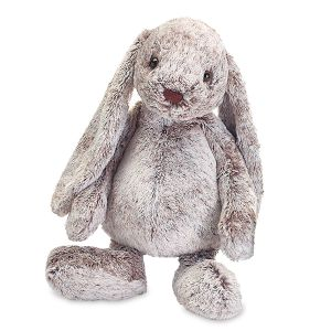 Floppy Ears Personalized Bunny