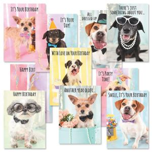 Puppies Birthday Cards Value Pack