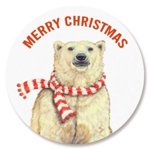 Polar Bears Seals