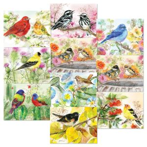 Bird Lovers Note Cards Value Pack