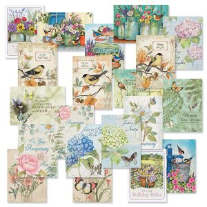 Susan Winget Studio with Seals Cards Value Pack