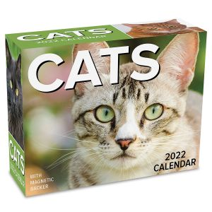 2022 Day-to-Day Cats Desk Calendar