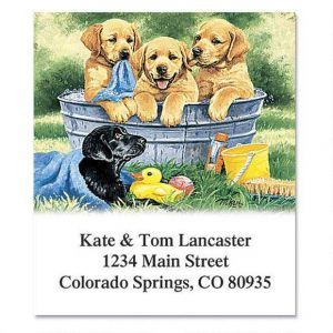 Labrador Love Select Address Labels