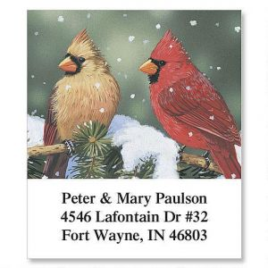Cardinals Select Address Labels