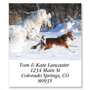 Best Friends Select Address Labels  (12 designs)