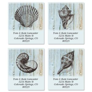 Coastal Shells Select Address Labels  (4 Designs)