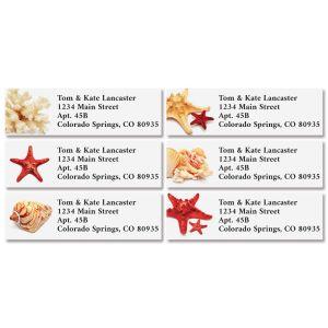 Sea Stars & Shells Classic Address Labels (6 Designs)