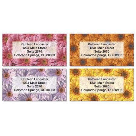 Daisy Delight Border Address Labels  (4 Designs)
