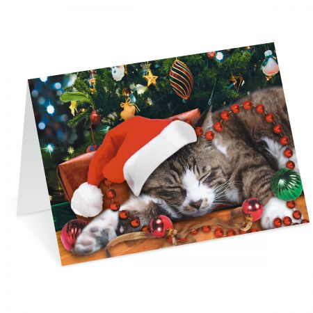 Picture This™ Christmas Cat Christmas Cards