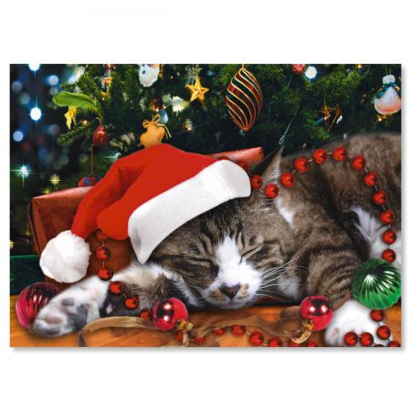 Picture This™; Christmas Cat Personalized Christmas Cards - Set of 18