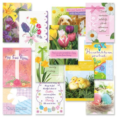 Faith easter greeting cards value pack current catalog expressions of faith easter cards value pack m4hsunfo