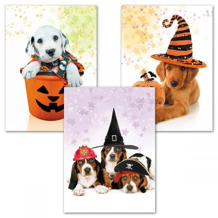 Photo Dog Halloween Cards