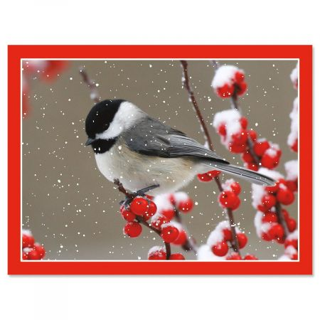Winter Chickadee Note Cards