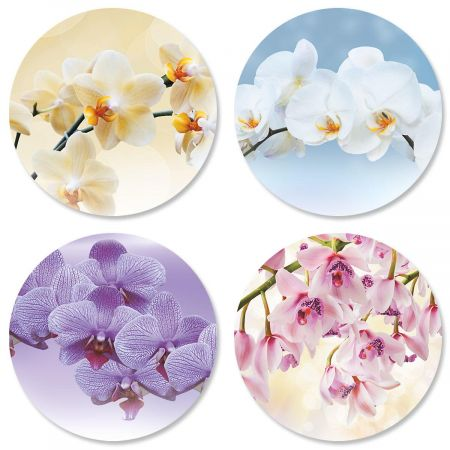 Orchid Seals (4 Designs)