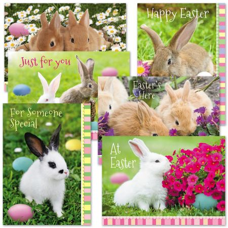 Photo Bunny Easter Cards