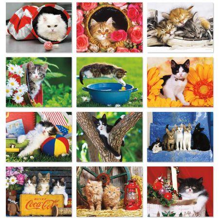 2018 Love Those Cats Wall Calendar