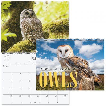 2018 Owls Wall Calendar